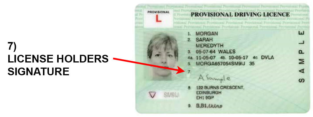 license to drive column 7